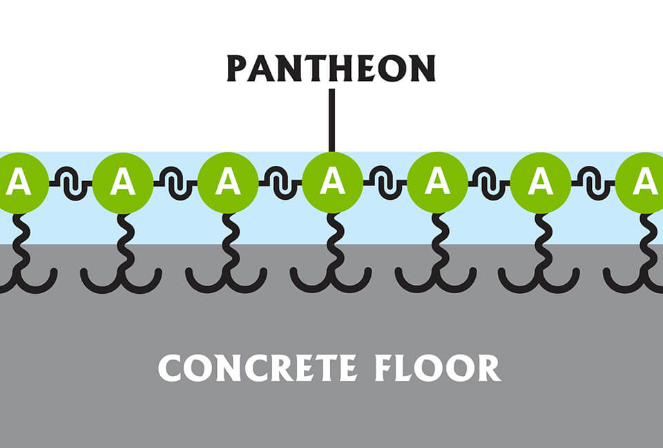 Pantheon with a visual representation of linking technology